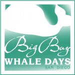 FINAL New Big Bay Whale Days logo