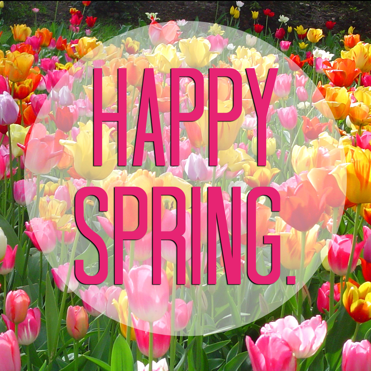 Image result for first day of spring images