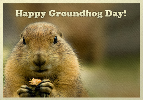Image result for happy groundhog day images